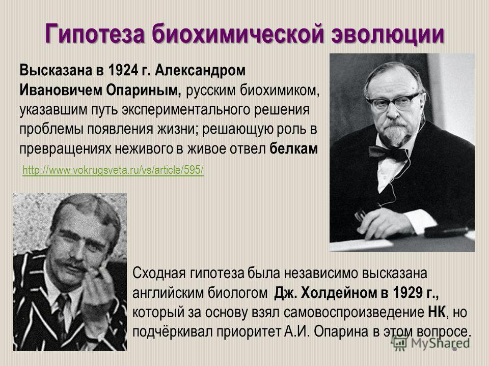 Гипотеза биохимической эволюции Высказана в 1924 г. Александром Ивановичем Опариным, русским биохимиком, указавшим путь экспериментального решения проблемы появления жизни; решающую роль в превращениях неживого в живое отвел белкам Сходная гипотеза б
