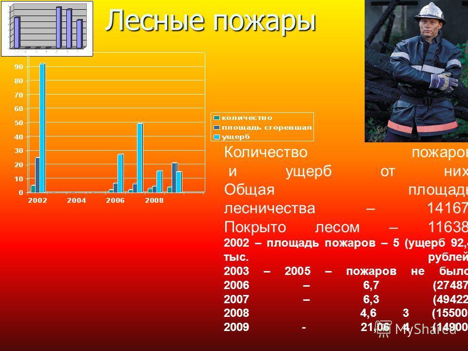 Лесные пожары Количество пожаров и ущерб от них. Общая площадь лесничества – 14167. Покрыто лесом – 11638. 2002 – площадь пожаров – 5 (ущерб 92,4 тыс. рублей) 2003 – 2005 – пожаров не было. 2006 – 6,7 (27487) 2007 – 6,3 (49422) 2008 4,6 3 (15500) 200