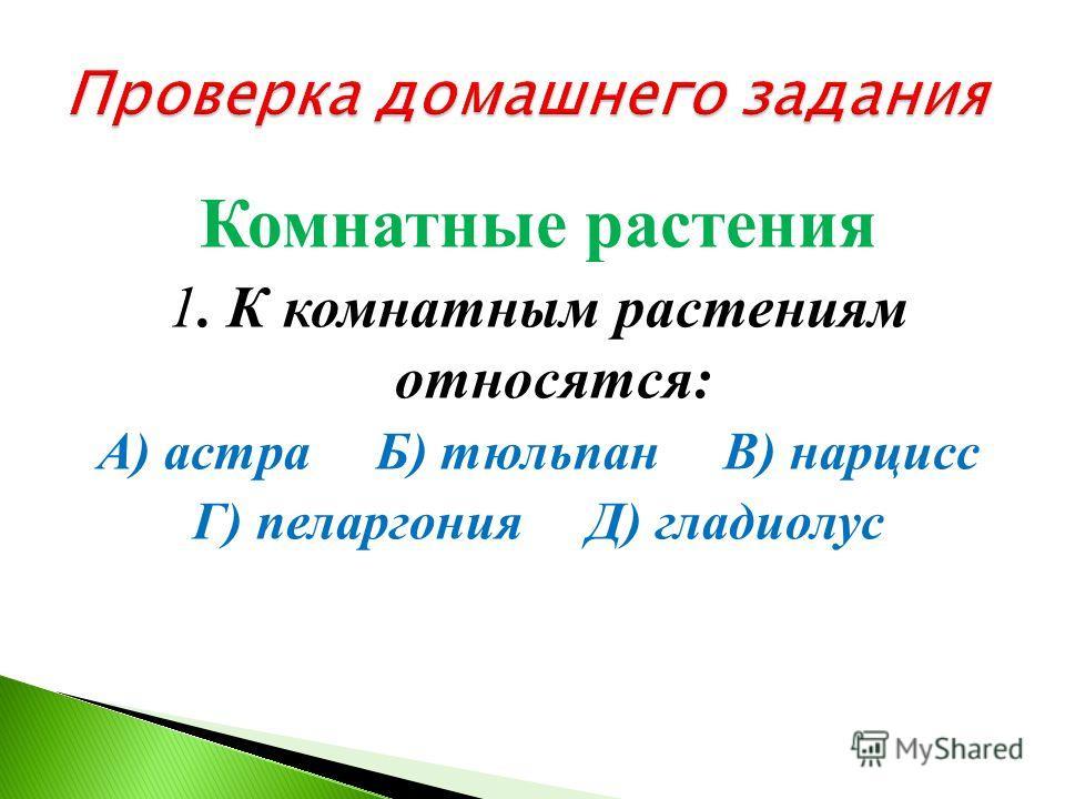 Урок окружающего мира во 2 классе Учитель начальных классов Зайцева Вероника Петровна