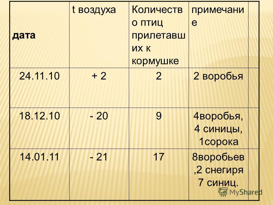 дата t воздуха Количеств о птиц при летавших к кормушке примечание 24.11.10+ 2+ 222 воробья 18.12.10- 2094 воробья, 4 синицы, 1 сорока 14.01.11- 21178 воробьев,2 снегиря 7 синиц.