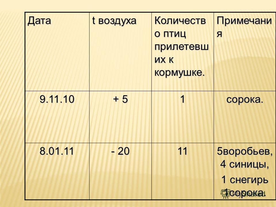 Дата t воздуха Количеств о птиц прилетевших к кормушке. Примечани я 9.11.10 + 5+ 5+ 5+ 51 сорока. 8.01.11 - 20 11 5 воробьев, 4 синицы, 1 снегирь 1 сорока.