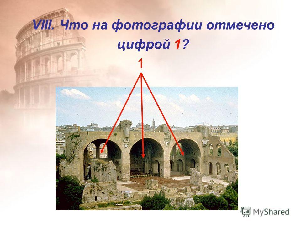 VIII. Что на фотографии отмечено цифрой 1? 1