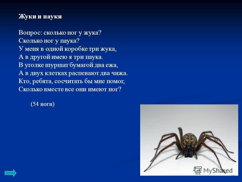 Жуки и пауки Вопрос: сколько ног у жука? Сколько ног у паука? У меня в одной коробке три жука, А в другой имею я три паука. В уголке шуршат бумагой два ежа, А в двух клетках распевают два чижа. Кто, ребята, сосчитать бы мне помог, Сколько вместе все