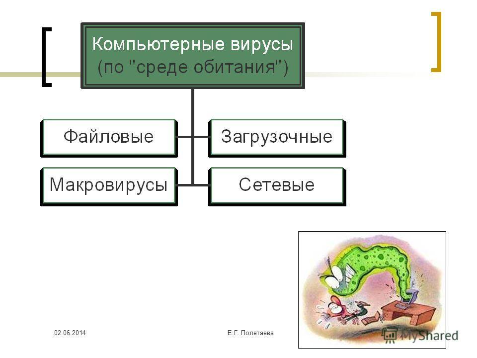 02.06.2014Е.Г. Полетаева 7