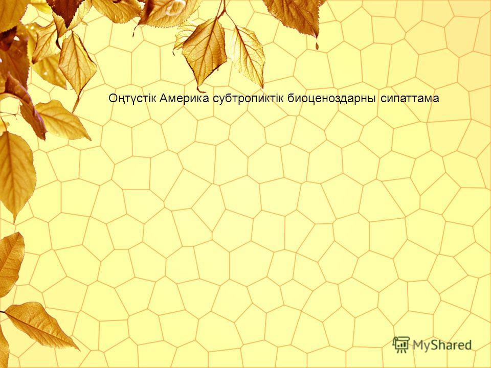 Оңтүстік Америка субтропикиитік биоценоздарны сипаттама