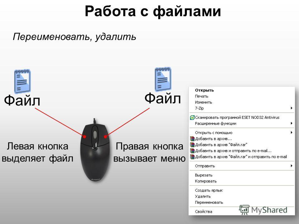 Работа с файлами Левая кнопка выделяет файл Правая кнопка вызывает меню Переименовать, удалить