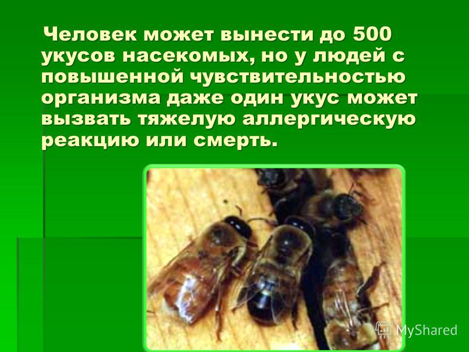 Человек может вынести до 500 укусов насекомых, но у людей с повышенной чувствительностью организма даже один укус может вызвать тяжелую аллергическую реакцию или смерть. Человек может вынести до 500 укусов насекомых, но у людей с повышенной чувствите