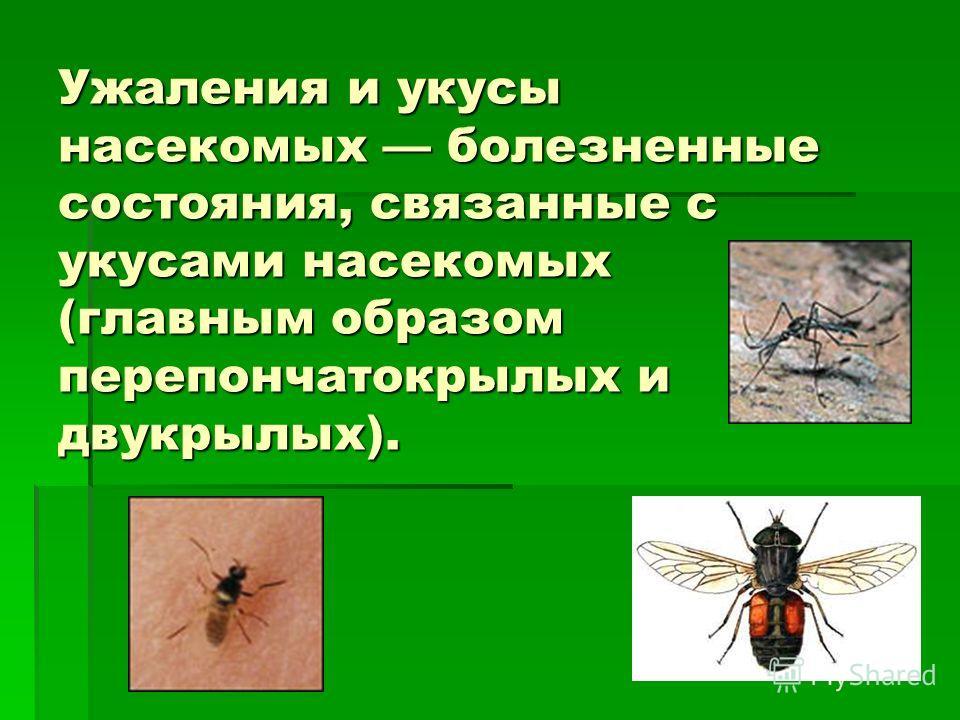 Ужаления и укусы насекомых болезненные состояния, связанные с укусами насекомых (главным образом перепончатокрылых и двукрылых).