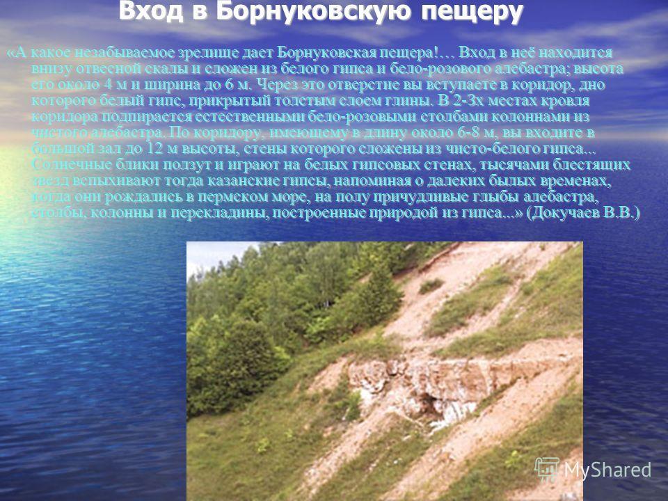 Вход в Борнуковскую пещеру «А какое незабываемое зрелище дает Борнуковская пещера!… Вход в неё находится внизу отвесной скалы и сложен из белого гипса и бело-розового алебастра; высота его около 4 м и ширина до 6 м. Через это отверстие вы вступаете в