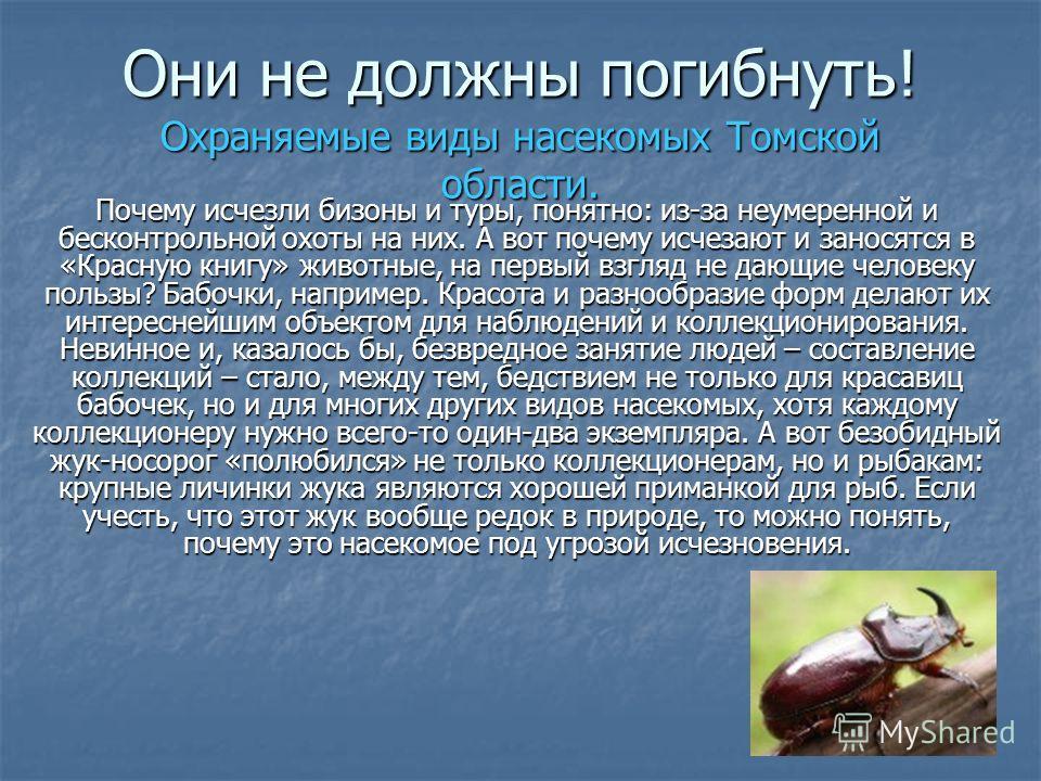 Они не должны погибнуть! Охраняемые виды насекомых Томской области. Почему исчезли бизоны и туры, понятно: из-за неумеренной и бесконтрольной охоты на них. А вот почему исчезают и заносятся в «Красную книгу» животные, на первый взгляд не дающие челов