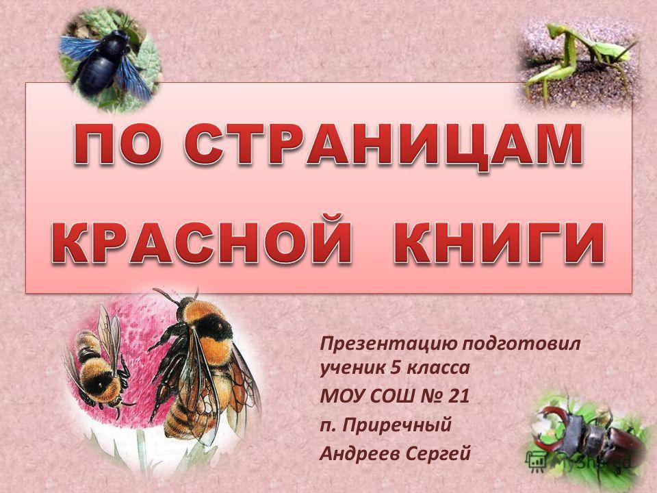 Презентацию подготовил ученик 5 класса МОУ СОШ 21 п. Приречный Андреев Сергей