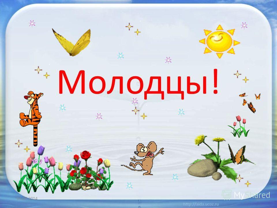 Молодцы! 03.06.201414