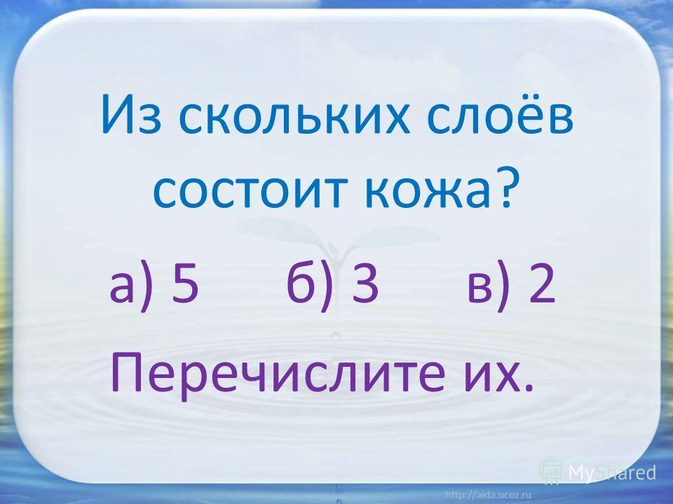 Из скольких слоёв состоит кожа? а) 5 б) 3 в) 2 Перечислите их.