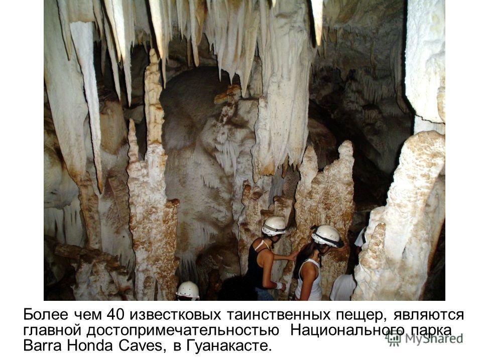 Более чем 40 известковых таинственных пещер, являются главной достопримечательностью Национального парка Barra Honda Caves, в Гуанакасте.