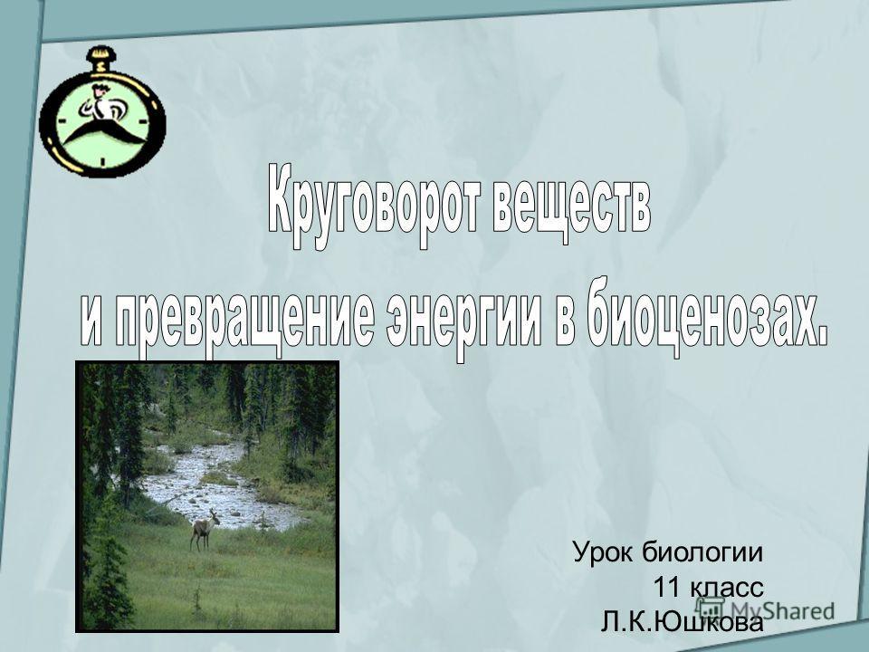 Урок биологии 11 класс Л.К.Юшкова