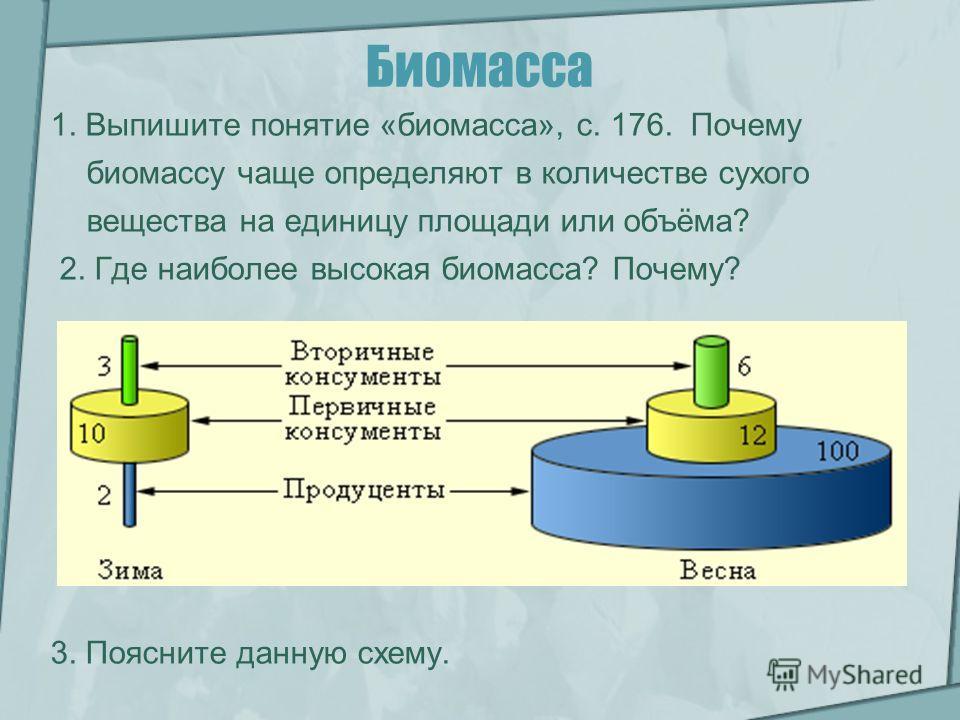 Биомасса 1. Выпишите понятие «биомасса», с. 176. Почему биомассу чаще определяют в количестве сухого вещества на единицу площади или объёма? 2. Где наиболее высокая биомасса? Почему? 3. Поясните данную схему.