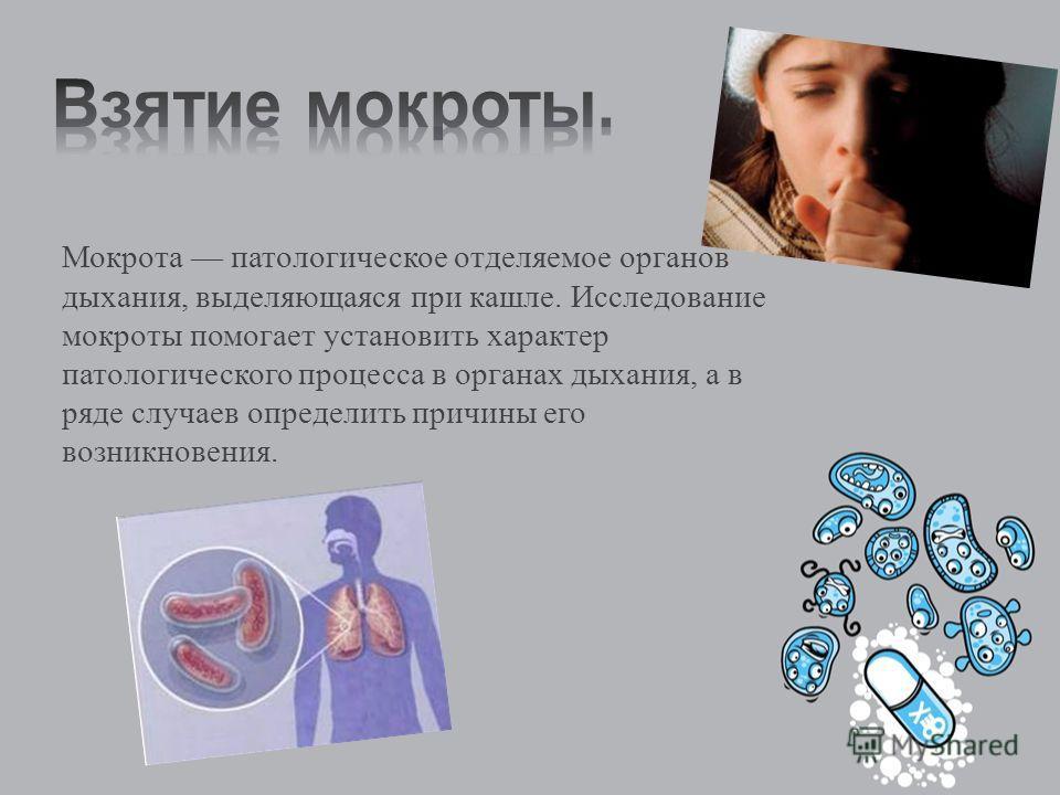 Мокрота патологическое отделяемое органов дыхания, выделяющаяся при кашле. Исследование мокроты помогает установить характер патологического процесса в органах дыхания, а в ряде случаев определить причины его возникновения.