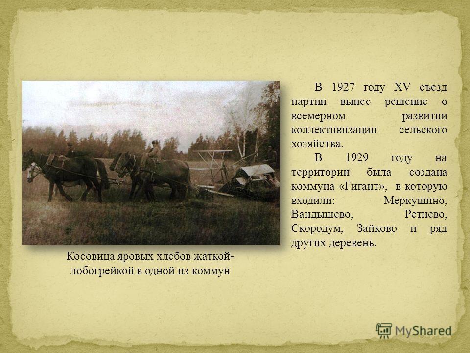В 1927 году XV съезд партии вынес решение о всемерном развитии коллективизации сельского хозяйства. В 1929 году на территории была создана коммуна «Гигант», в которую входили: Меркушино, Вандышево, Ретнево, Скородум, Зайково и ряд других деревень. Ко
