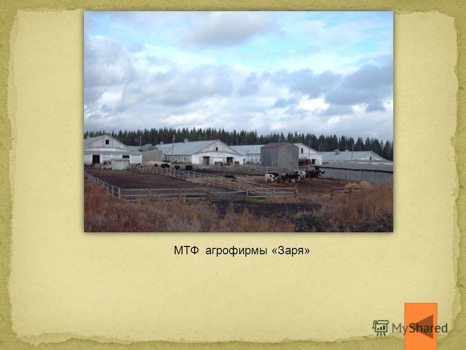 МТФ агрофирмы «Заря»