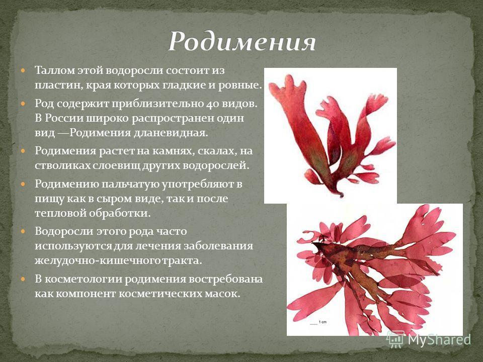 Таллом этой водоросли состоит из пластин, края которых гладкие и ровные. Род содержит приблизительно 40 видов. В России широко распространен один вид Родимения дланевидная. Родимения растет на камнях, скалах, на стволиках слоевищ других водорослей. Р