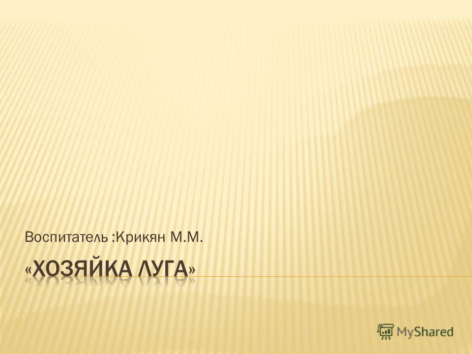 Воспитатель :Крикян М.М.