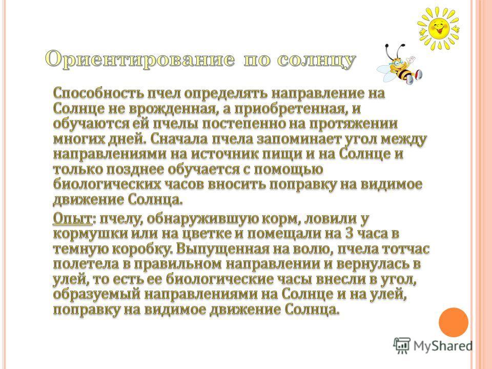Важную роль в ориентировании пчел играет цвет улья. Многолетний опыт показывает, что если ульи на пасеке окрашены в цвета, хорошо различимые пчелами, то пчелы ошибаются редко.
