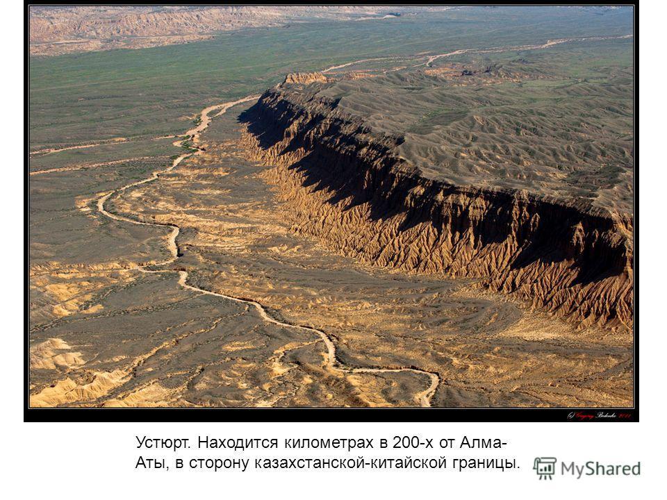 Устюрт. Находится километрах в 200-х от Алма- Аты, в сторону казахстанской-китайской границы.