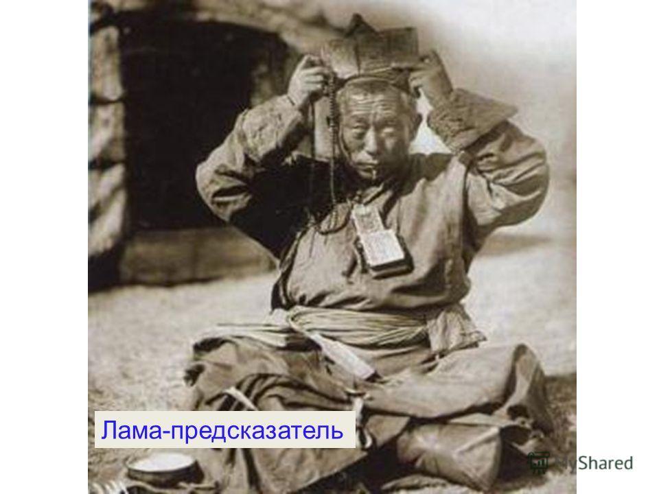 Лама-предсказатель