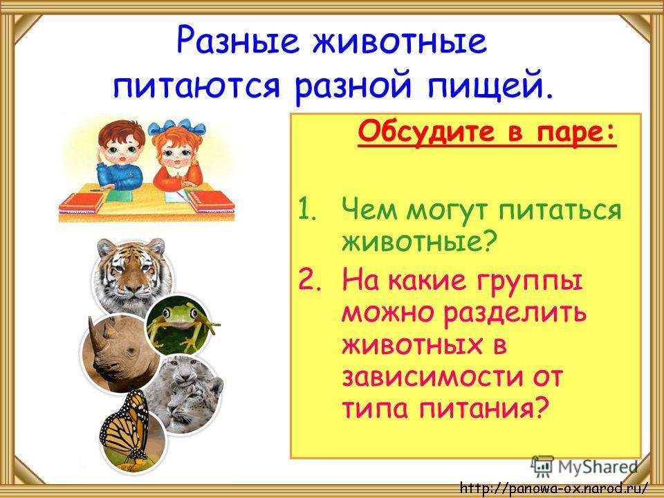 Разные животные питаются разной пищей. Обсудите в паре: 1. Чем могут питаться животные? 2. На какие группы можно разделить животных в зависимости от типа питания?