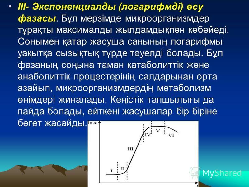 III- Экспоненциалды (логарифмді) өсу фазаны. Бұл мерзімде микроорганизмдер тұрақты максималды жылдамдықпен көбейеді. Сонымен қатар жасуша санының логарифмы уақытқа сызықтық түрде тәуелді болады. Бұл фазаның соңына тамань катаболиттік және анаболиттік