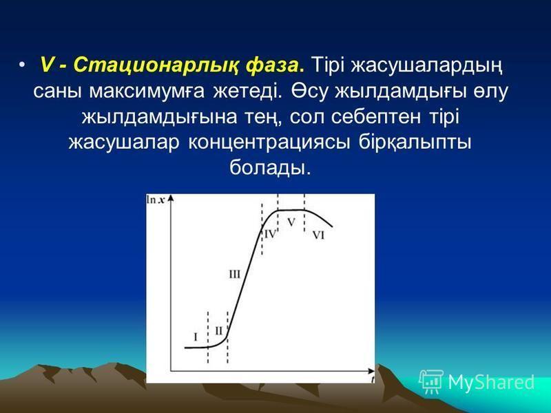 V - Стационарлық фаза. Тірі жасушалардың саны максимумға жгетеді. Өсу жылдамдығы өлу жылдамдығына тең, сол себептен тірі жасушалар концентрациясы бірқалыпты болады.