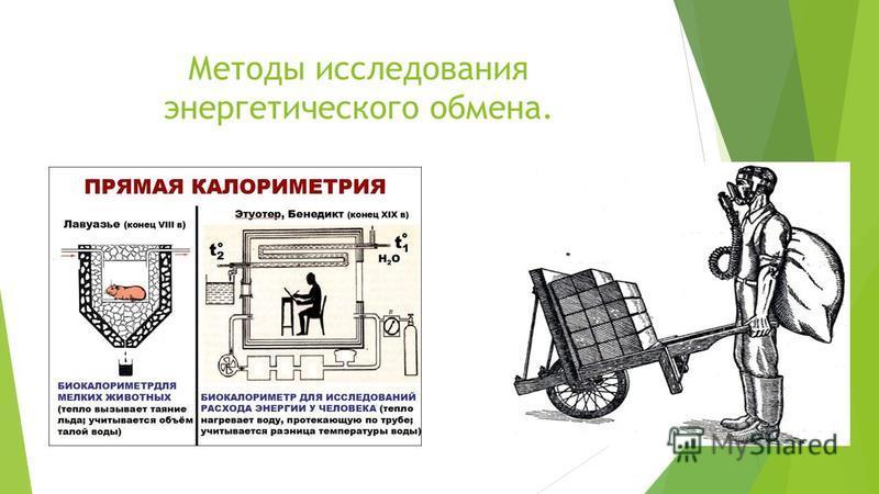 Методы исследования энергетического обмена.
