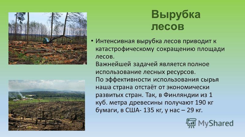 Вырубка лесов Интенсивная вырубка лесов приводит к катастрофическому сокращению площади лесов. Важнейшей задачей является полное использование лесных ресурсов. По эффективности использования сырья наша страна отстаёт от экономически развитых стран. Т