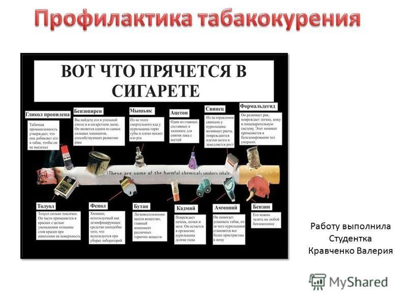 Работу выполнила Студентка Кравченко Валерия