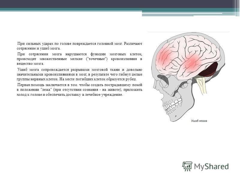 Что полезно кушать при сотрясении головного мозга