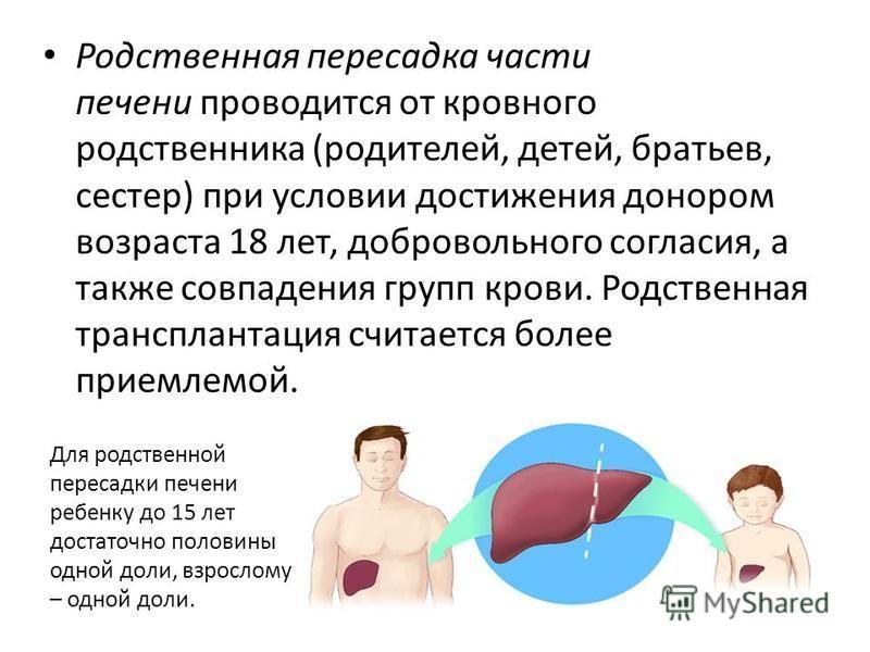 Реферат трансплантация и донорство 4985