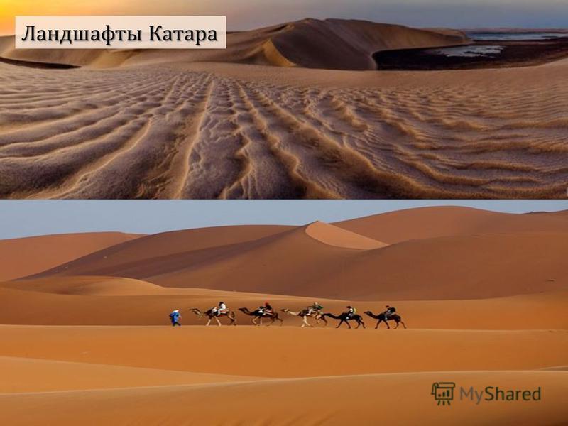 Ландшафты Катара