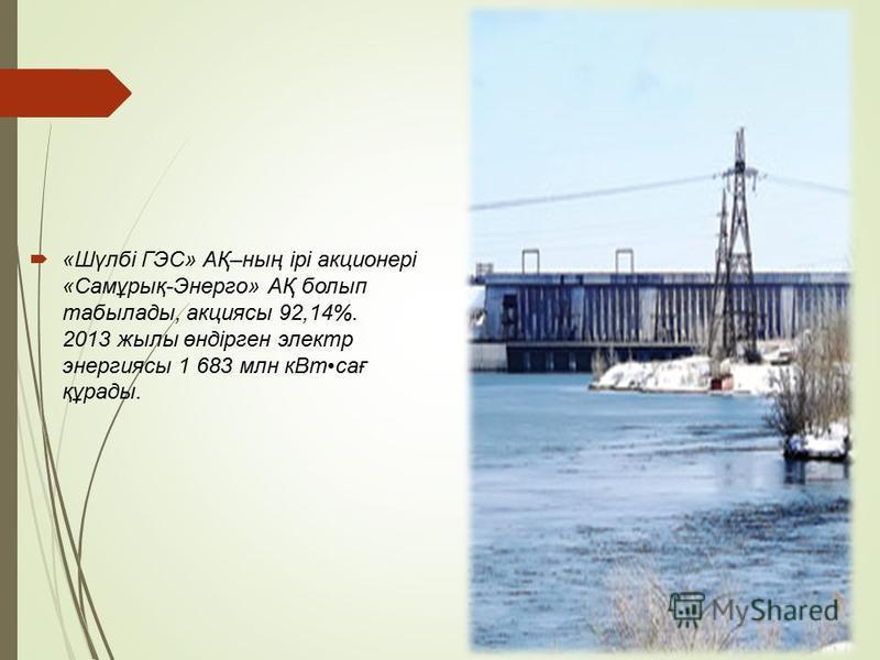 «Шүлбі ГЭС» АҚ–ның ірі акционері «Самұрық-Энерго» АҚ болып табылады, акциясы 92,14%. 2013 жилы өндірген электр энергиясы 1 683 млн к Втсағ құрады.