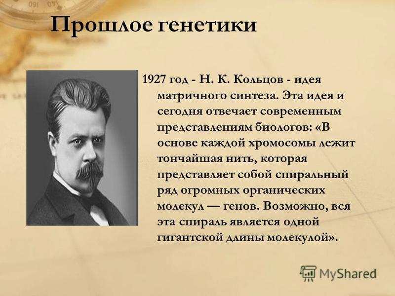 1927 год - Н. К. Кольцов - идея матричного синтеза. Эта идея и сегодня отвечает современным представлениям биологов: «В основе каждой хромосомы лежит тончайшая нить, которая представляет собой спиральный ряд огромных органических молекул генов. Возмо
