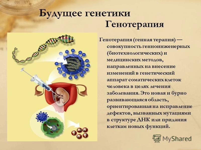 Будущее генетики Генотерапия Генотерапия (генная терапия) совокупность генно-инженерных (биотехнологических) и медицинских методов, направленных на внесение изменений в генетический аппарат соматических клеток человека в целях лечения заболевания. Эт