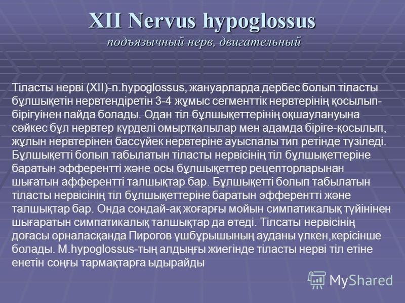 XII Nervus hypoglossus подъязычный нерв, двигательный Тіласты нерві (XII)-n.hypoglossus, жануарларда дербес болып тіласты бұлшықетін нервтендіретін 3-4 жұмыс сегменттік нерв терінің қосылып- бірігуінен пайда болады. Одан тіл бұлшықеттерінің оқшаулану