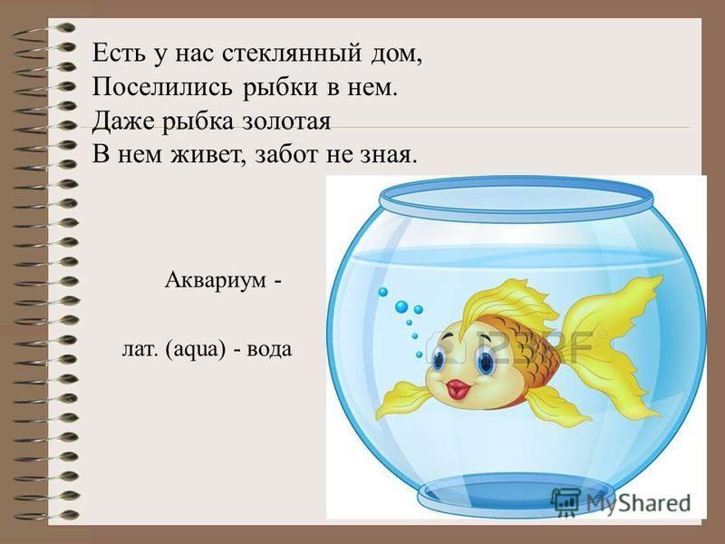 Есть у нас стеклянный дом, Поселились рыбки в нем. Даже рыбка золотая В нем живет, забот не зная. Аквариум - лат. (aqua) - вода