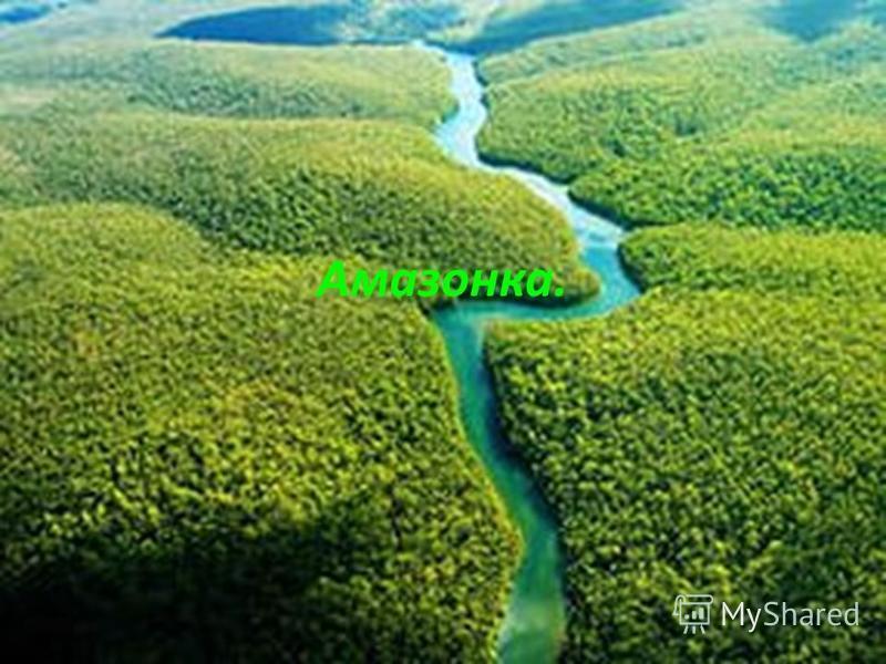 Амазонка.