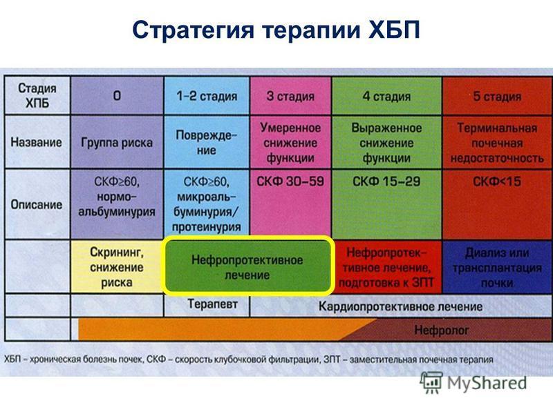 Стратегия терапии ХБП