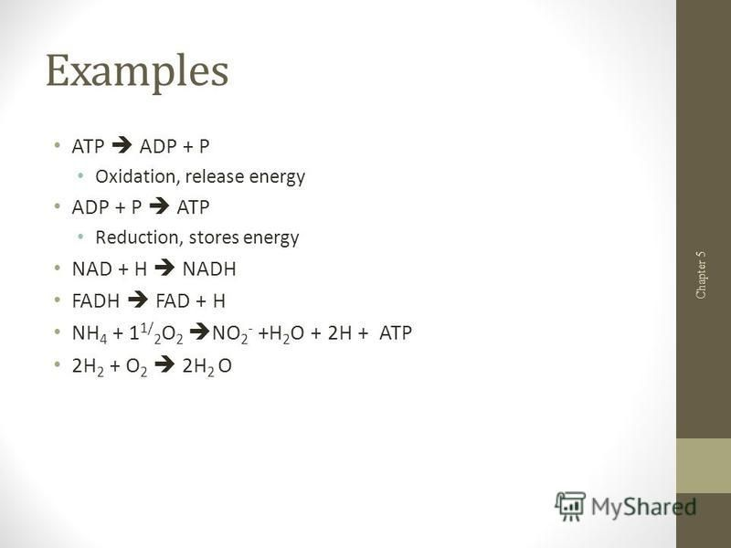 Examples ATP ADP + P Oxidation, release energy ADP + P ATP Reduction, stores energy NAD + H NADH FADH FAD + H NH 4 + 1 1/ 2 O 2 NO 2 - +H 2 O + 2H + ATP 2H 2 + O 2 2H 2 O Chapter 5