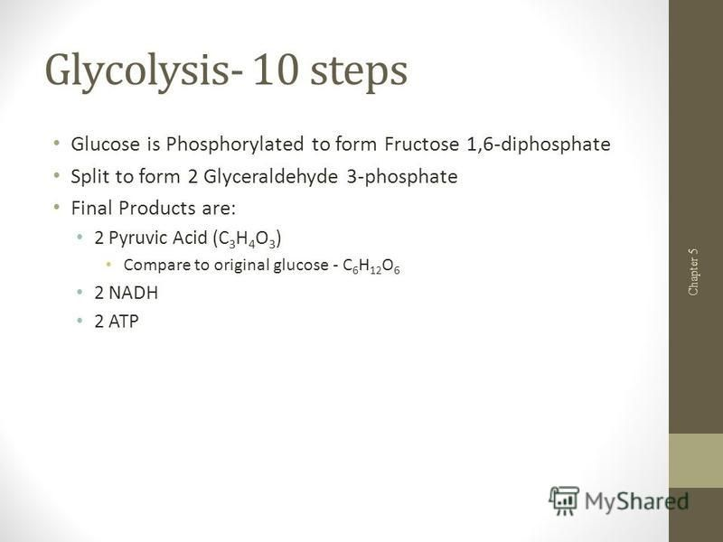 Glycolysis- 10 steps Glucose is Phosphorylated to form Fructose 1,6-diphosphate Split to form 2 Glyceraldehyde 3-phosphate Final Products are: 2 Pyruvic Acid (C 3 H 4 O 3 ) Compare to original glucose - C 6 H 12 O 6 2 NADH 2 ATP Chapter 5