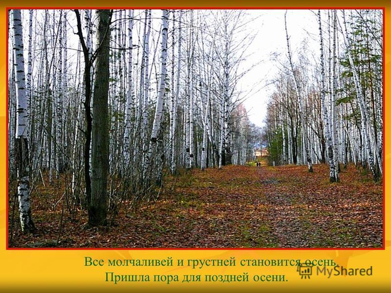 Все молчаливей и грустней становится осень. Пришла пора для поздней осени.