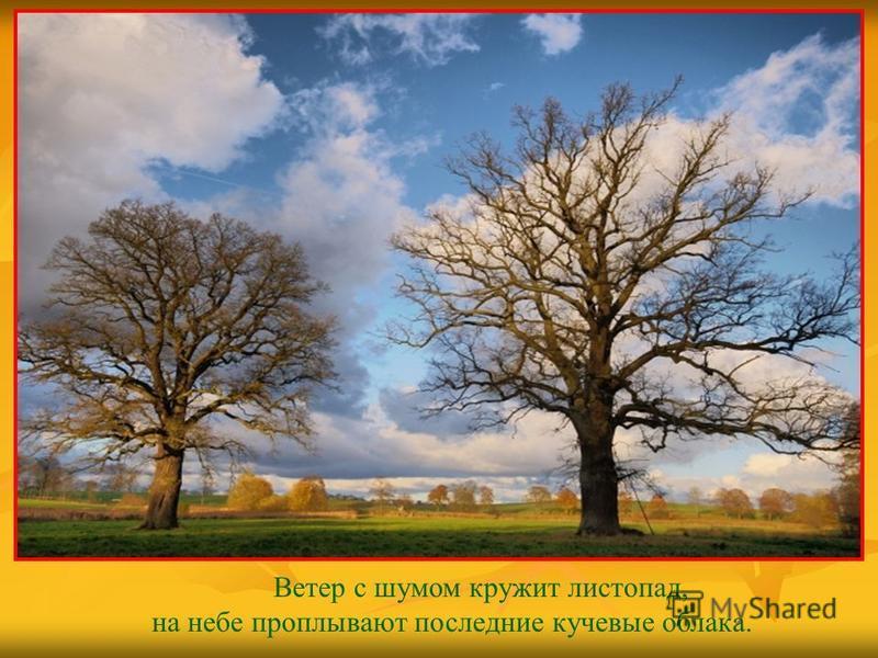 Ветер с шумом кружит листопад, на небе проплывают последние кучевые облака.
