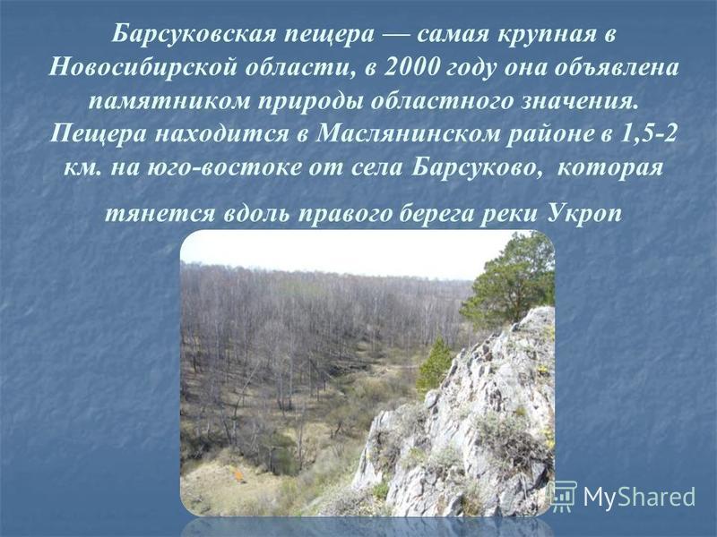 Барсуковская пещера самая крупная в Новосибирской области, в 2000 году она объявлена памятником природы областного значения. Пещера находится в Маслянинском районе в 1,5-2 км. на юго-востоке от села Барсуково, которая тянется вдоль правого берега рек