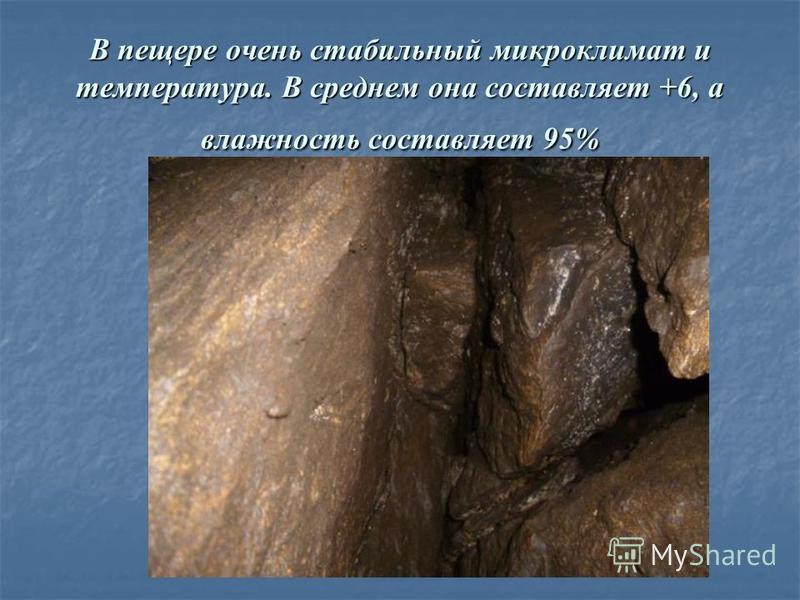 В пещере очень стабильный микроклимат и температура. В среднем она составляет +6, а влажность составляет 95%